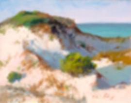 Survivor Dune, 11x14,oil