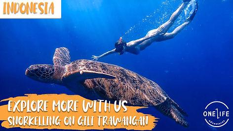 Snorkelling Gili T FB _ YT Thumbnail.jpg