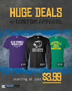 BCA 399 Shirts Cover Image_Facebook.jpg