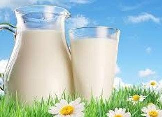 Dairy/Milk (Leche)