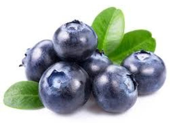 Blueberry / Arandanos Capella