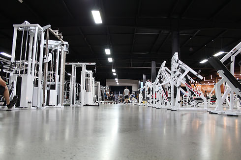 the gym on floor.JPG