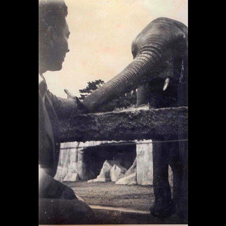 1950s Road trip to Europe : Aleko in Rotterdam Zoo