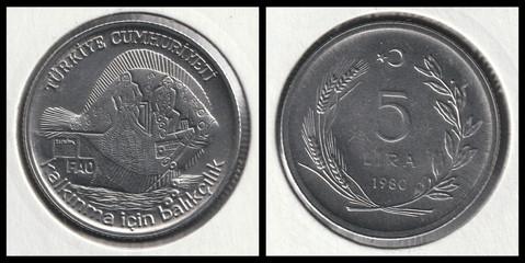 5 Lira FAO