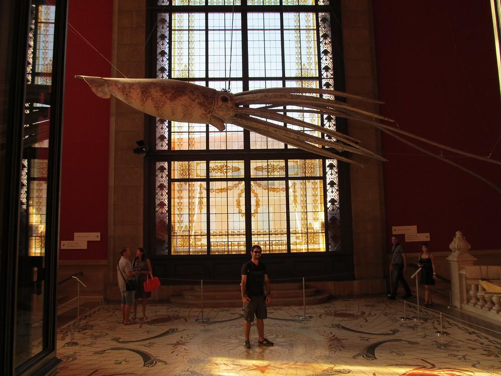 Oceanographic Museum, Skeleteon, -2mi3-