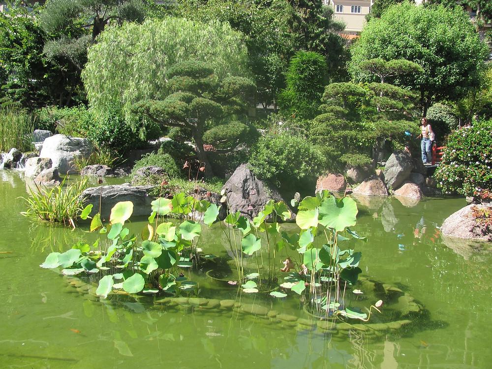 Jardin Japonais Landscape -2mi3-