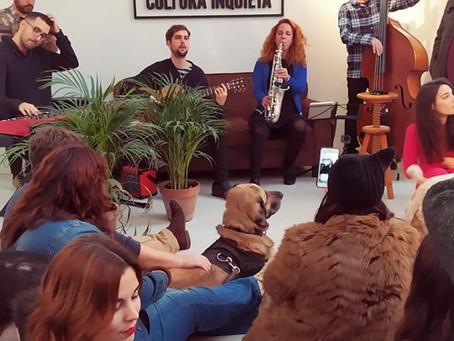 Concierto de jazz para perros adoptados parte 2 | Jazz concert for adopted dogs II