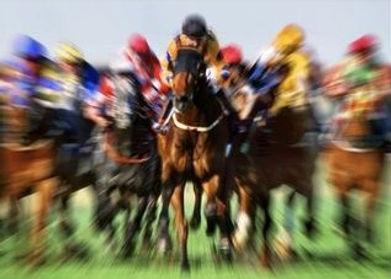 Spring racing carnival, thoroughbreds