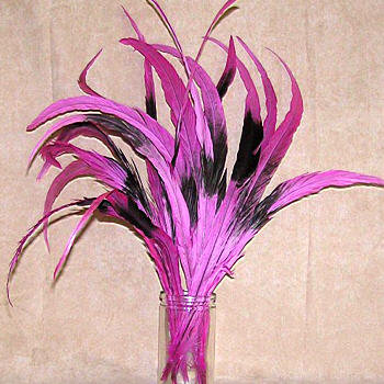 Rooster tails, natural ~ Dyed