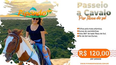 banner passeio a cavalo.png