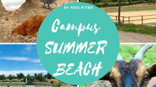 CAMPUS SUMMER BEACH!