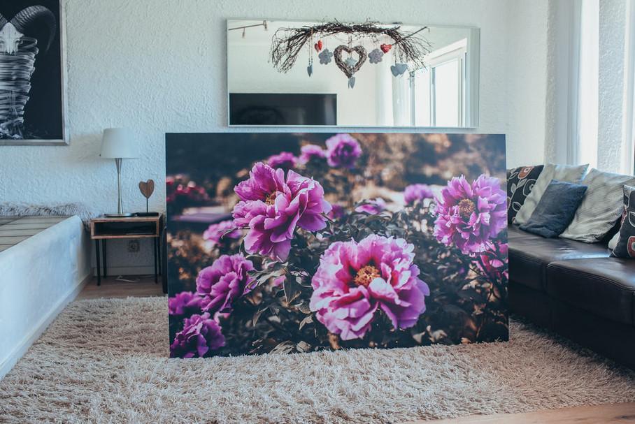 """Neues """"Flowerpower"""" Mega Print erhältlich auf 10mm Forex mit Aluschiene"""