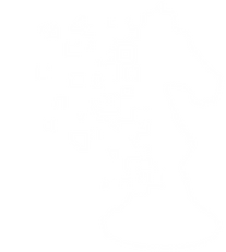 SIN Logo 2white.png