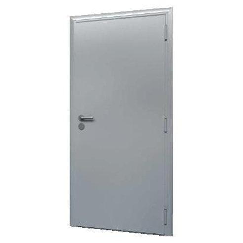Техническая дверь DoorHan D-880-T/G/G/9007/R/N/k