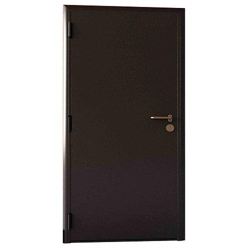 Техническая дверь DoorHan D-980-T/G/G/8017/L/V/k
