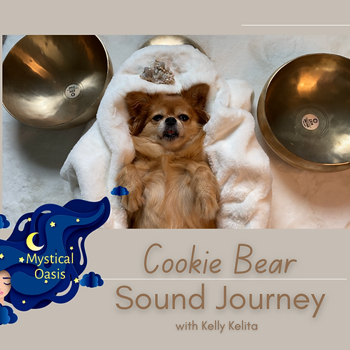 Sound Bath with The Mystical Cookie Bear