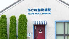 あかね動物病院 2002年