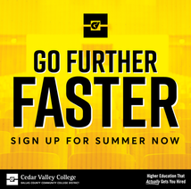 CVC_FurtherFaster_SummerGraphic2.png