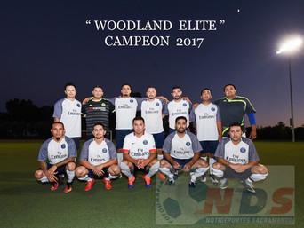 Un futbol de altura se llevo a cabo en Woodland Liga WSCL.