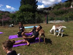 Geissenyoga relaxed