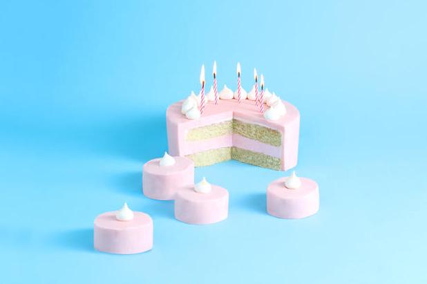 fox mattress anniversary cake