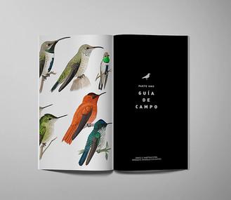 2-aves-sandra-marin.jpg