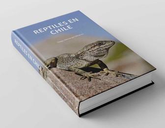 0_Repitles-Cerrado.jpg