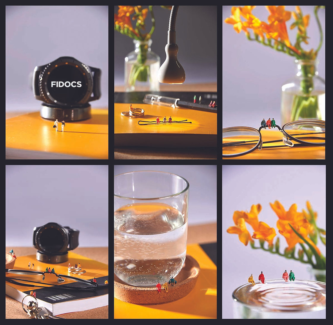 Photos FIDOCS.jpg