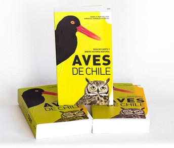 1-Aves.jpg