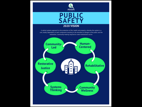 Public Safety Vision 2020: Evidence-Informed Solutions