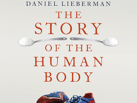 """A review of Daniel Lieberman's """"The Story of the Human Body - Evolution, Health & Disease"""""""