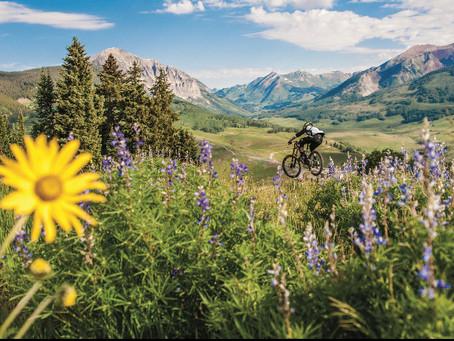 It's Festival Season in Colorado Ski Country