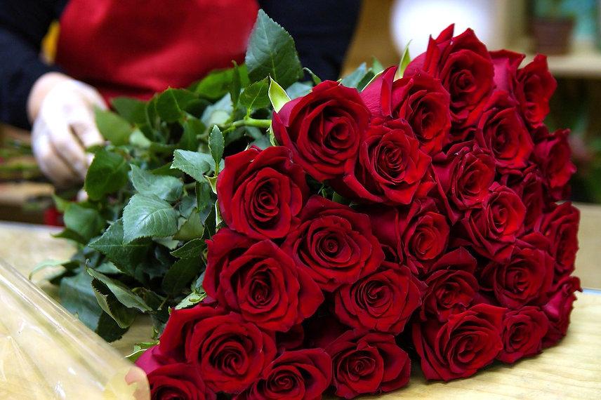 rose-3090834_1920_edited.jpg