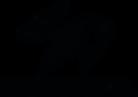 CD Logo 2_.png