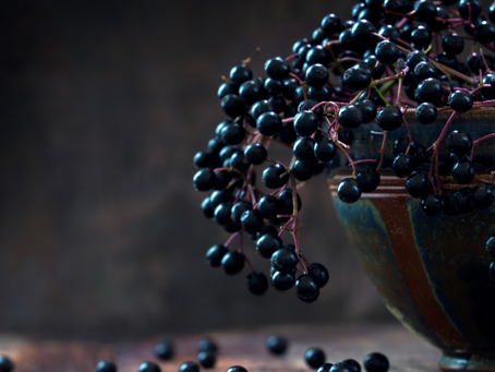 Elderberry Immune Gummy Recipe