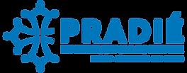 AP logo 3.0.png