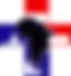 NBNA Logo.png