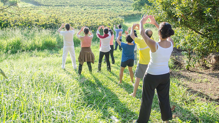 Encontros Meditativos - Online