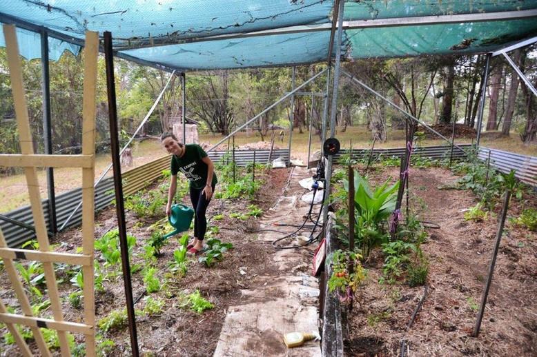 marg garden.jpg