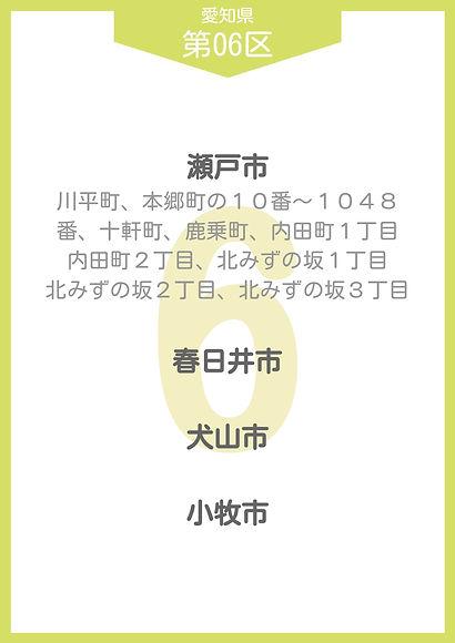 22 愛知県 小選挙区_page-0006.jpg