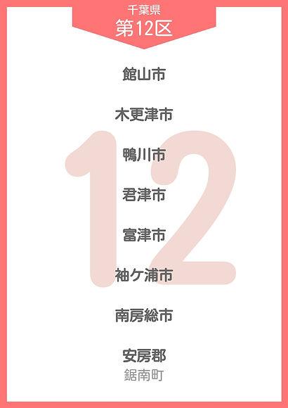 12 千葉県 小選挙区_page-0012.jpg