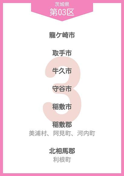 08 茨城県 小選挙区_page-0003.jpg