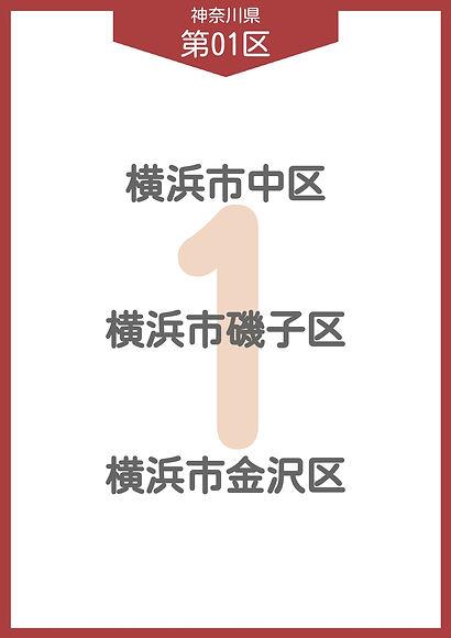 13 神奈川県 小選挙区_page-0001.jpg