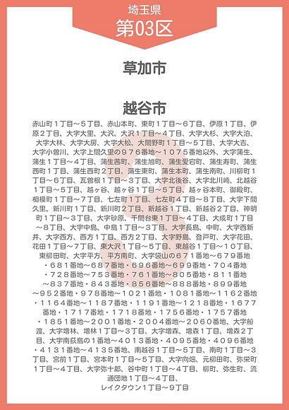 11 埼玉県 小選挙区_page-0003.jpg