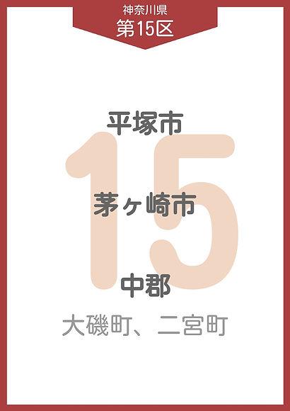 13 神奈川県 小選挙区_page-0015.jpg