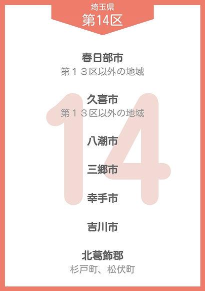 11 埼玉県 小選挙区_page-0015.jpg