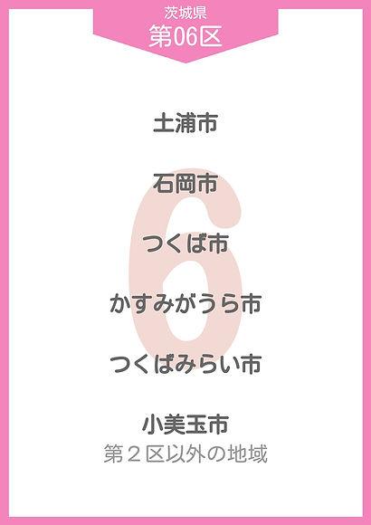 08 茨城県 小選挙区_page-0006.jpg