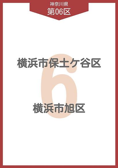 13 神奈川県 小選挙区_page-0006.jpg