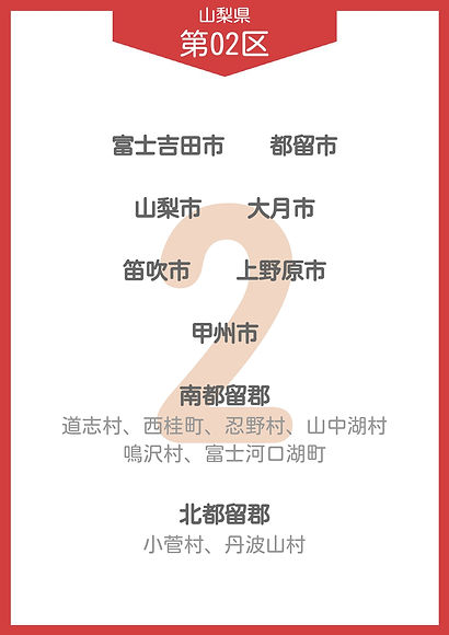 14 山梨県 小選挙区_page-0002.jpg