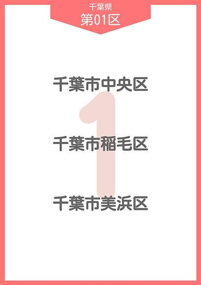 12 千葉県 小選挙区_page-0001.jpg